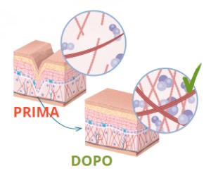 Skin Vitalis - funziona - come si usa - composizione - ingredienti