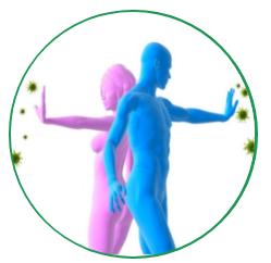 Immuno Defender - composizione - ingredienti - come si usa - funziona
