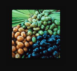 Hemorexal - come si usa - ingredienti - funziona - composizione