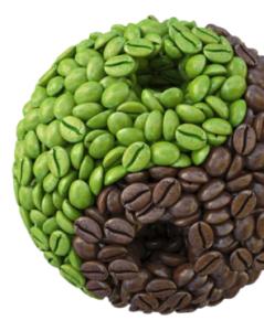 Diet Box - funziona - come si usa - composizione - ingredienti