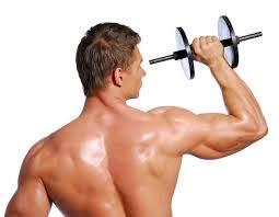 Muscle Formula - effetti collaterali - controindicazioni