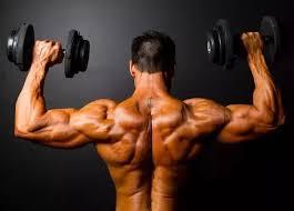 Muscle Formula - funziona - composizione - ingredienti - come si usa